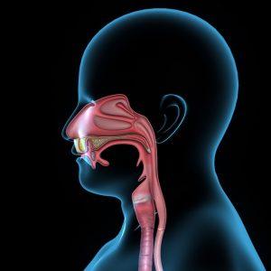 Oral & Maxillofacial Surgery